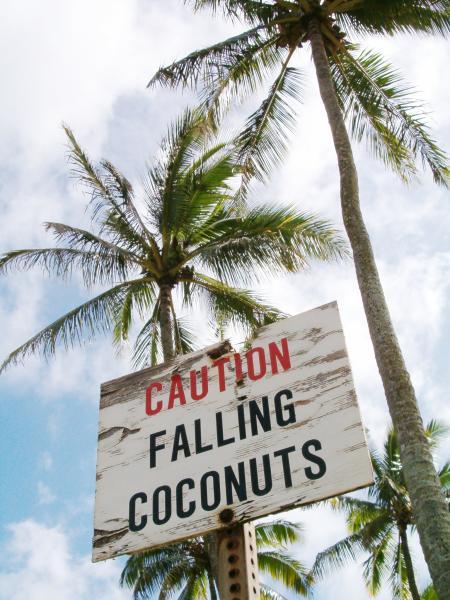FallingCoconuts