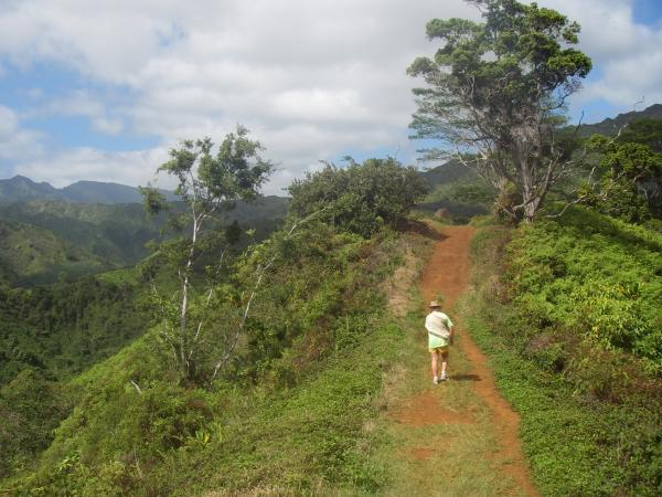 Rolling red dirt trail on a gentle ridge overlooking lush green valleys