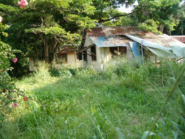 The Real Old Koloa Town A Kauai Blog