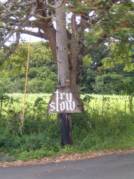 Hand-lettered Gothic script sign that reads Try Slow, tacked to a telephone pole along a rural Kauai road.