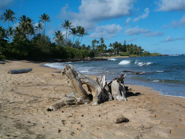 Wailua Beach looking towards the condos