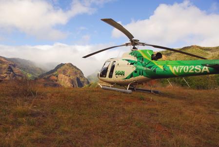 SafariHelicopterLanding