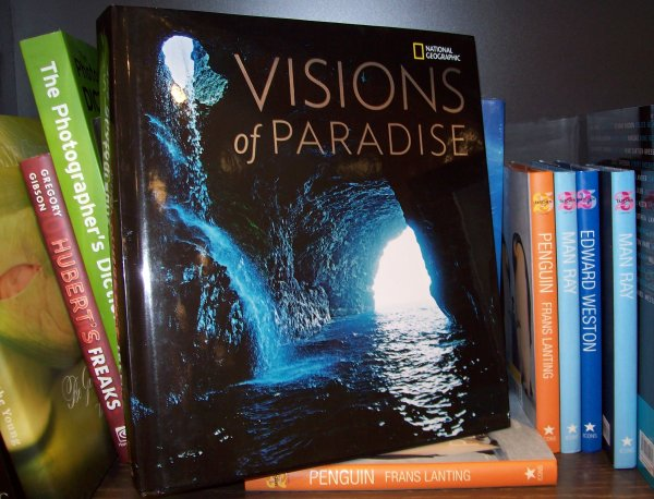 VisionsOfParadise